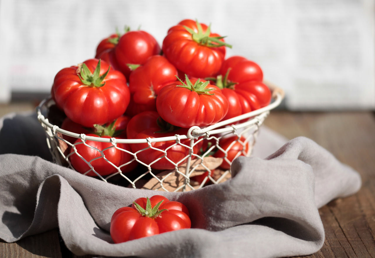 Sommerküche Tomaten : Sommerküche u fernweh und andere ideen